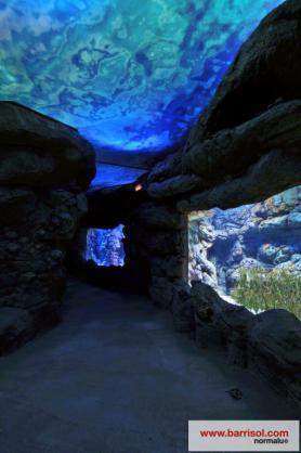 Aquarium of Palma de Mallorca