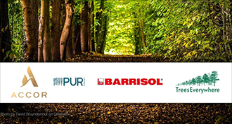 5168 trees planted - Barrisol® reiterates its ecological commitment